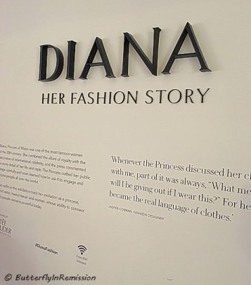 Diana ~ Her Fashion Story