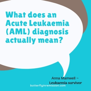 what does an acute myeloid leukaemia actually mean what happens next